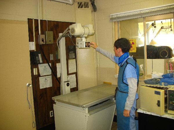 X ray room for X ray room decor